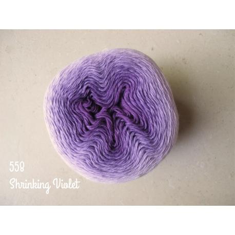 558 Shrinking Violet