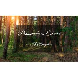 Promenade en Estonie - KAL mystère